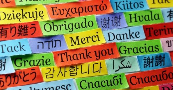 studiare-lingue-online