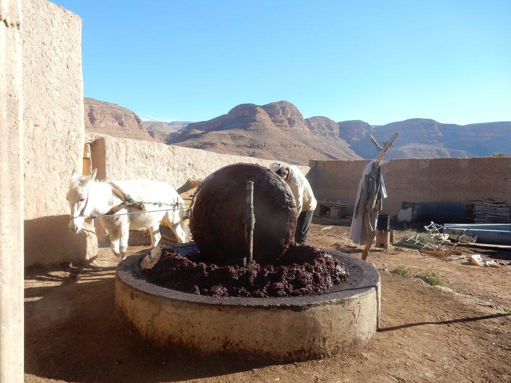 marocco viaggiosventure