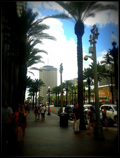 new-orleans-canal-street